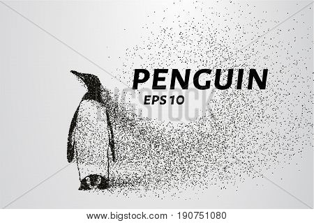Penguin Of The Particles. The Penguin Consists Of Circles And Points. Vector Illustration.