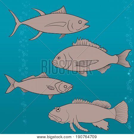fish icons set. Outline illustration tune, dish, seabream Harlequin Fish