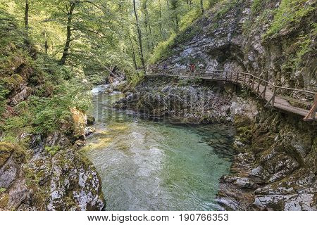 Bled, Slovenia - June 3, 2017: Tourists Walking Inside The Vintgar Gorge On A Wooden Path Between Bl