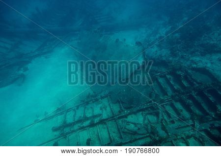 Diving Tour To Shipwreck Ruins