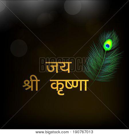 illustration of jai shree krishna text in Hindi language with Peacock feather on the occasion of hindu festival  Janmashtami birth day of Hindu god krishna