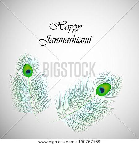 illustration of Peacock feathers with Happy Janamashtami text on the occasion of hindu festival Janamashtami