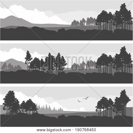 Vector illustration set of horizontal banners fictional landscape twilight suburb of forest silhouettes trees black and white color