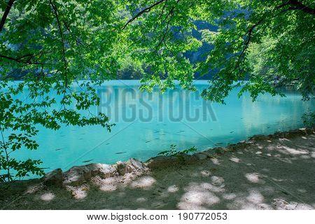 Plitvice lake along walkway, blue lake water