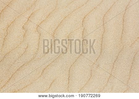 Background texture of sand dune. Natural texture