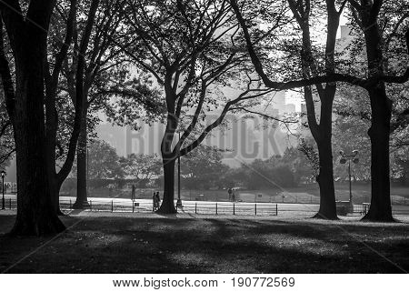 A high contrast black and white view of Central Park and a late hazy afternoon in New York City.