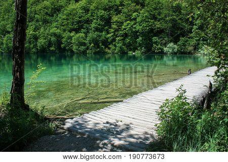 Plitvice lakes. Walkway along Plitivice lakes. Lake between trees