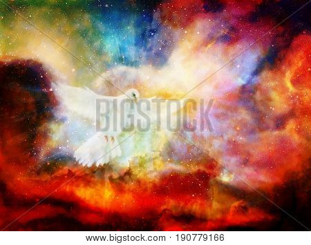 Dove in cosmic space. Painting and graphic design. Graphic effect