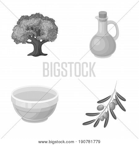 An olive tree, a branch with olives, a vessel and a jug of oil. Olives set collection icons in monochrome  vector symbol stock illustration .