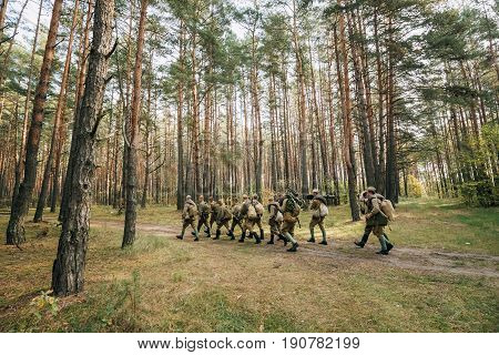 Group Of Re-enactors Dressed As Soviet Russian Red Army Infantry Soldiers Of World War II Marching Along Forest Road At Summer Autumn Season.