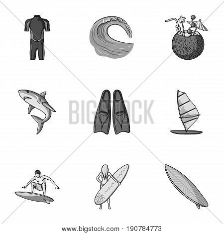A collection of pictures on the theme of the beach, the sea, surfing. Rescuers of the beach.Surfing icon in set collection on monochrome  vector symbol stock  illustration.