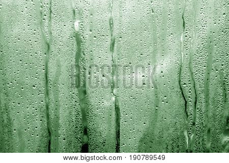 Green Toned Condensation Drops On Pvc Greenhouse