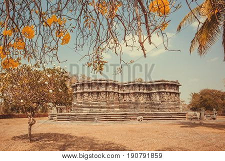 Example of historical architecture in India. Park with trees yellow flowers and 12th century Hoysaleshwara temple with carvings on stone walls in Halebidu, India
