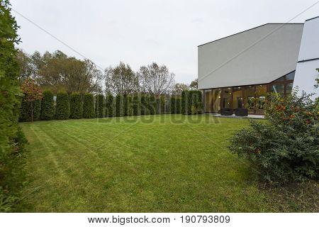 Enormous green garden in stylish designed residence