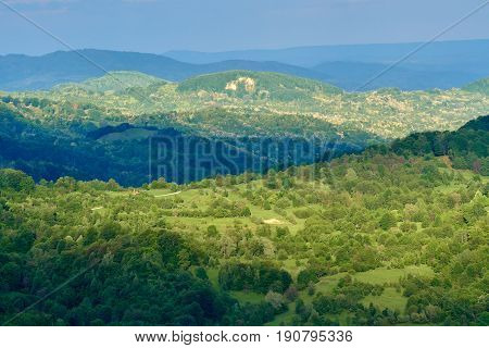 Green mountains covered completely in deciduous forests