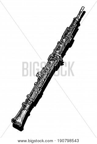 Vector hand drawn illustration of oboe. Black and white isolated on white.