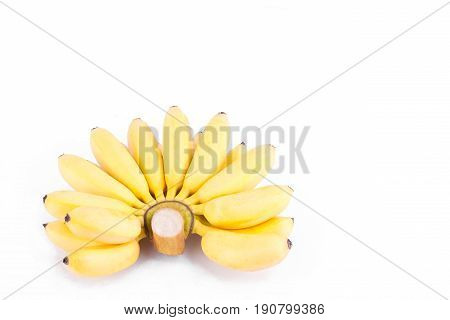 ripe hand of golden bananas or  Lady Finger banana     on white background healthy Pisang Mas Banana fruit food isolated