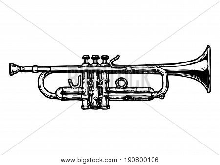 Vector hand drawn illustration of trumpet. Black and white isolated on white.