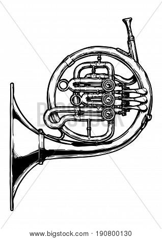 Vector hand drawn illustration of french horn. Black and white isolated on white.