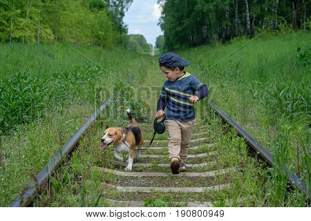 Boy four years old walks on a leash with a Beagle dog on the sleepers of the railway