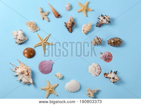 Creative layout made of different colorful seashells and greeting card on a blue background. Minimal style background