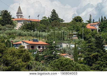 beautiful green landscape Strugnano Slovenia like in Toscana poster