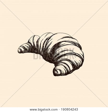 Hand drawn illustration of croissant isolated . Bakery product. Template for poster business card banner label and icon for bakery shop and menu. Bakery hand sketched.