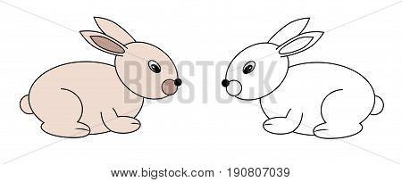 set of young rabbits animal vector illustration
