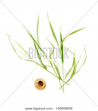 composition of skeinl of twine and green ornamental grasses on white background top view flat lay
