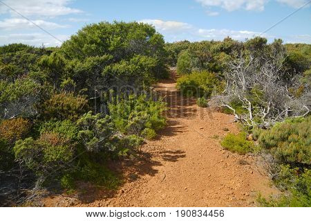 Pristine landscape on Tasman Peninsula, Cape Raoul walking track