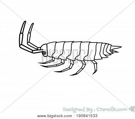 Drawing Art of Woodlouse Insect - Vector Stock Illustration