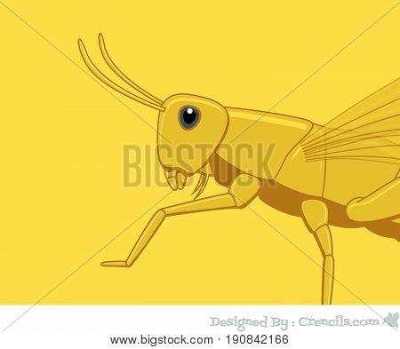 Creepy Grasshopper Closeup - Vector Stock Illustration
