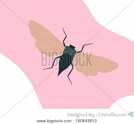 Creepy Cicada Insect Moth Flying Vector Illustration