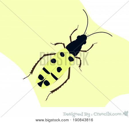 Creepy Weird Spotted Totengraber Insect Vector Illustration