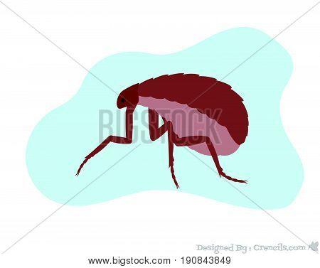 Creepy Floh Insect Animal Vector Illustration Design