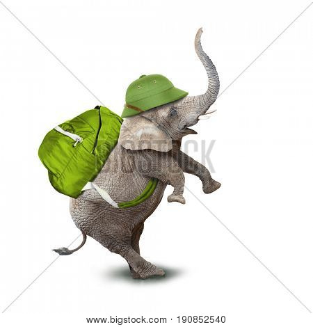 Young elephant as a adventurer with green backpack and pitch helmet going to vacations. Animal isolated on white background. Digital collage on leisure activities theme.