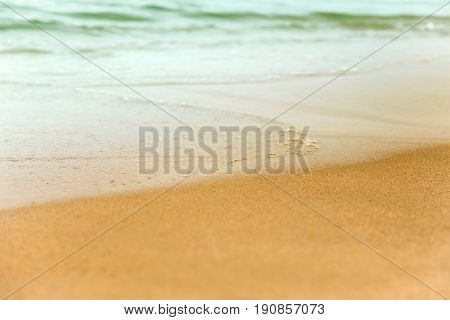 sea sandy shoreline closeup background with copy space