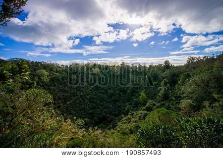 View to Rangitoto Island from North Head in a sunny day with a beautiful blue sky in a green forest.