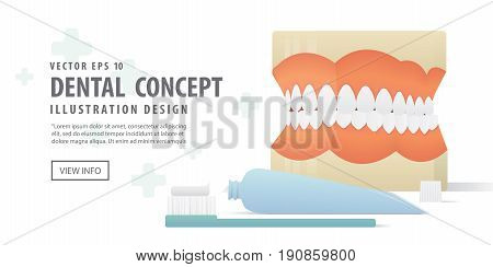 Banner Dentures Model And Tooth Brush And Toothpaste Illustration Vector On White Background. Dental