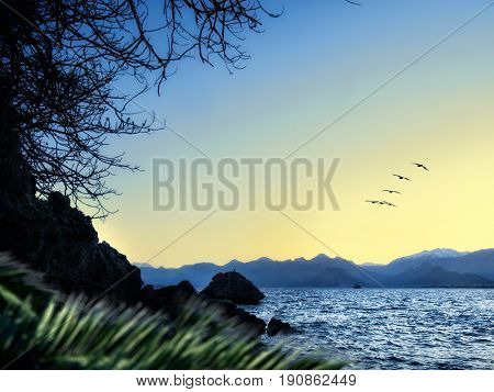 seascape image of dusk time and bird migration  on bay of Antalya, Turkey