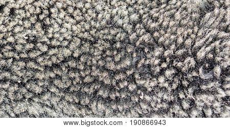 A faux fur as background . A photo