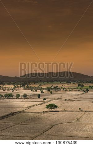 Global warming died and cracked soil in arid seasonView of the desert field