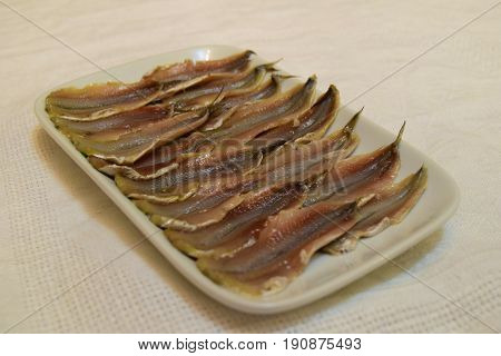 Headless salty anchovy fish fillet in ceramic plate on white tablecloth background