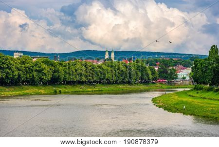 longest linden alley in europe. Summer landscape on the river embankment in Uzhgorod Ukraine.