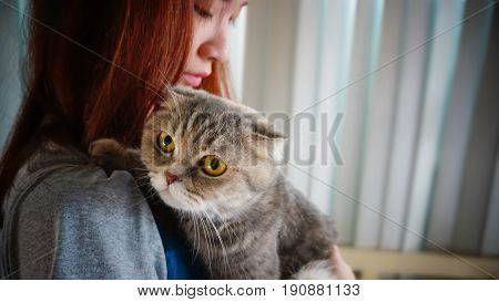 attractive teenager girl with Scottish Fold cat with text area very shallow depth of field. Processed with vintage style.