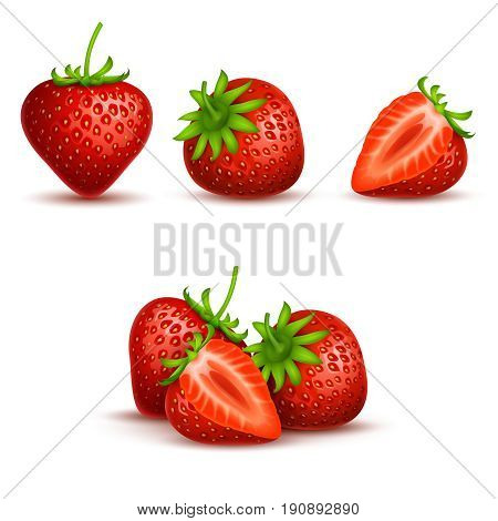 Vector realistic sweet and fresh strawberry isolated on white background. Fresh fruit organic, illustration of red sweet strawberry