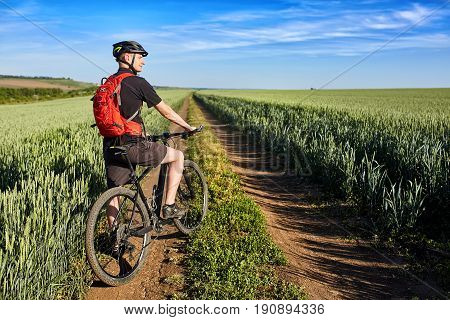 Rear view of the young cyclist riding bicycle on the road of the field. Attractive sportsman in the sportwear, with backpack and helmet. Travel in the countryside. Horizontal photo. Concept of the healthy and active lifestyle.