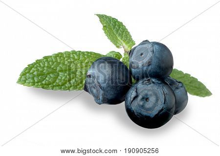 Image of blueberries and mint studio isolated on white background