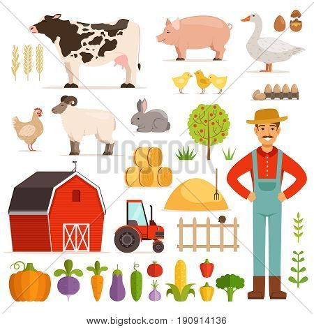 Different farm elements. Vegetables, transport and domestic animals. Vector illustrations set. Farm vegetable and animals chicken and cow