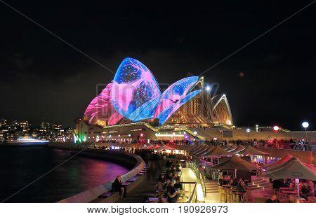 SYDNEY AUSTRALIA - MAY 31, 2017: Unidentified people visit Opera house night illumination in Sydney.
